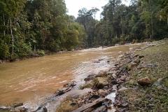 Endau-Rompin-Nationalpark (Malaysia)