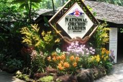Singapur Botanical Garden